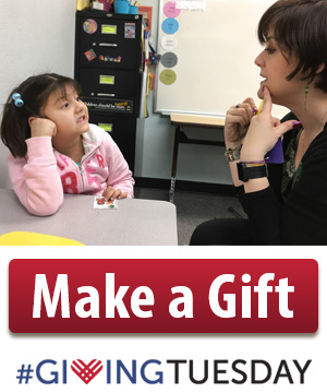 RiteCare SRCLP session, Make a Gift, #GivingTuesday